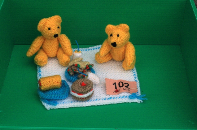 Mini Teddy Bears Picnic